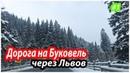 Поездка в Буковель. Львов, Микуличин. Дорога на Львов и Микуличин. Карпаты 1