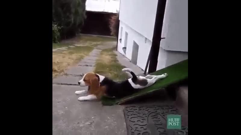 Когда лень по ступенькам