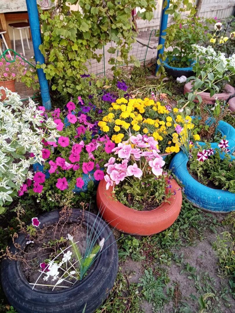Культработники из села Берёзовка рассказывают об односельчанах-цветоводах