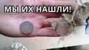 Закладные монеты! Поиск монет в доме. Нашли монеты под матицей!