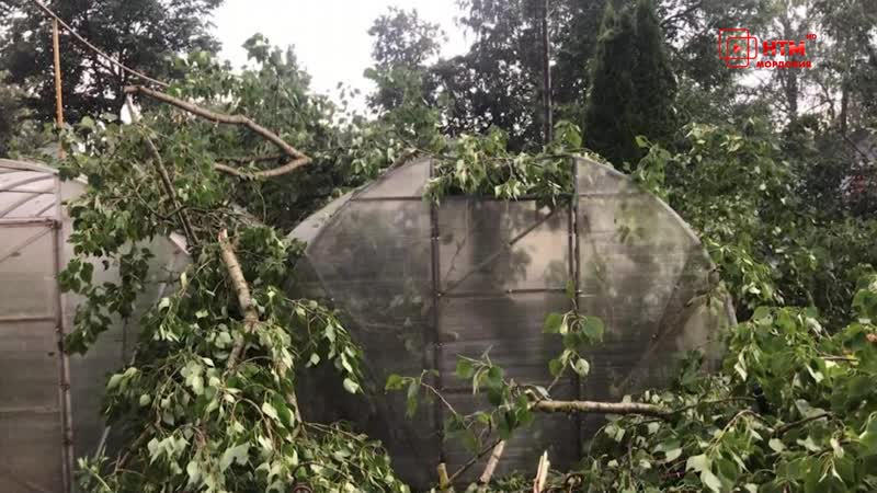 Ураган и его последствия в Темниковском районе