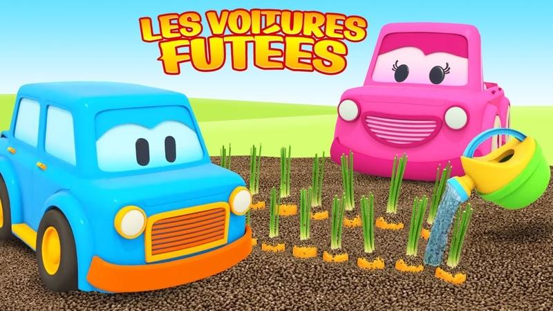 Les voitures futées sèment les graines et font la récolte Dessin animé éducatif pour enfants