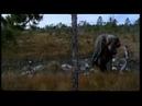 Кукушка Русский трейлер 2002 драма, военный, комедия