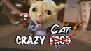 Cats ft. Crazy Frog (Axel F) *GOAL FOR 2000 SUBSCRIBERS*