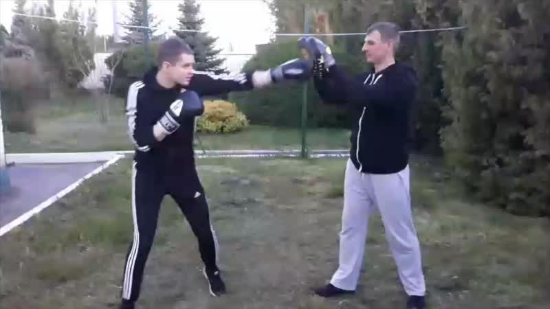 бокс mp4