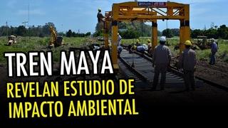 Se revela el estudio de impacto ambiental del Tren Maya