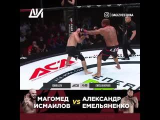 Магомед Исмаилов  Александром Емельяненко