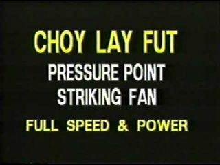 Tat Mau Wong. Pressure Point Fan