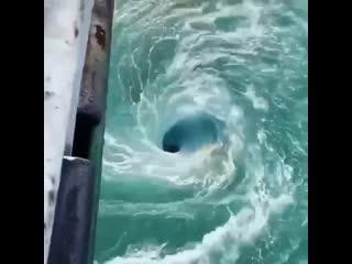 Большой водоворот можно увидеть, как на реке, так и в море или океане. Появляется он тогда, когда водяной поток начинает двигать