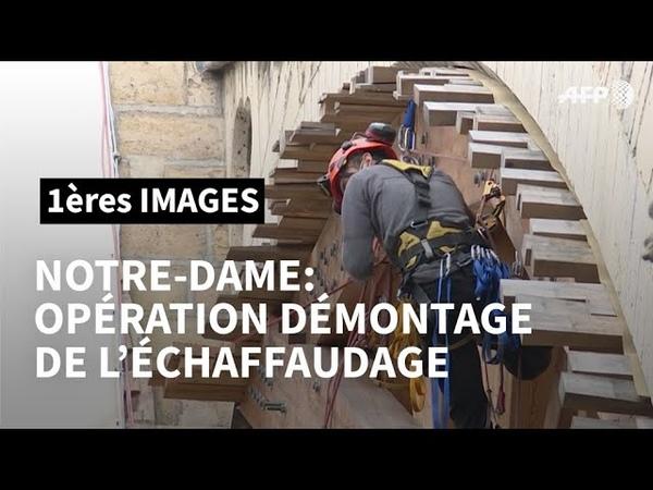 Notre-Dame les cordistes à lœuvre pour démonter léchafaudage   AFP Images