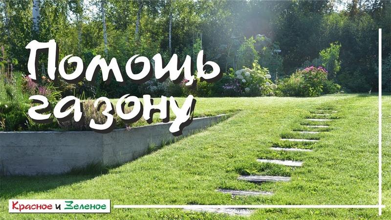 Эффективный уход за ГАЗОНОМ весной