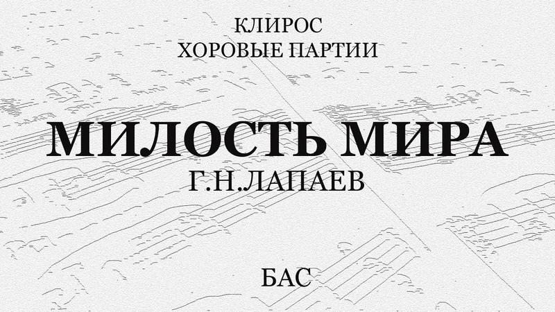 Милость Мира Лапаев Бас