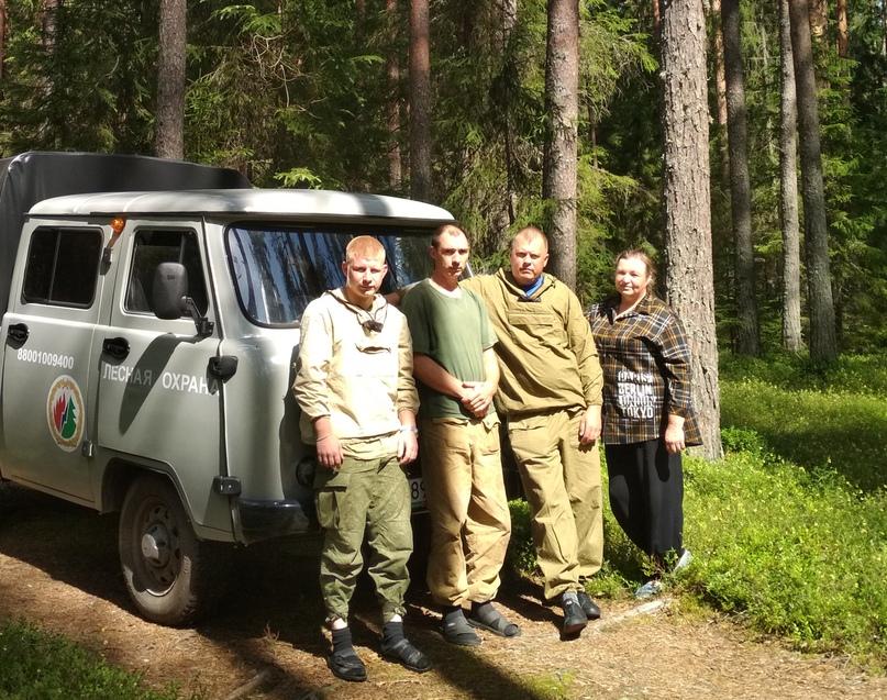 Лесной дозор, изображение №1