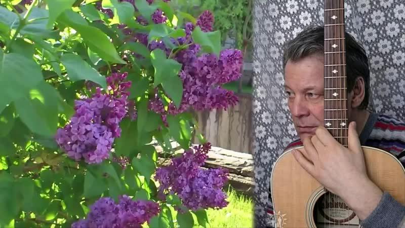 Сирень стихи музыка исполнение Евгений Бобков