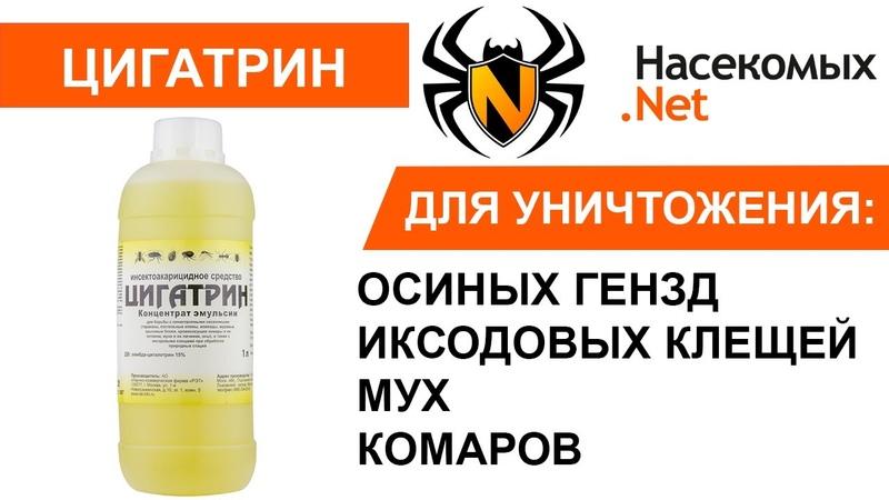 Эффективное средство от осиных гнезд, иксодовых клещей, комаров, мух, муравьев Цигатрин