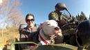 Собака питбуль едет в мотоциклетной коляске