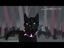 Коты воители Бич- Не значат сны так много