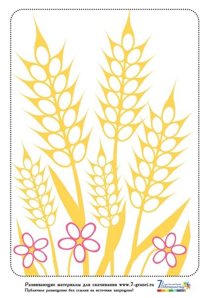 АППЛИКАЦИЯ «КОЛОСЬЯ ИЗ ТЫКВЕННЫХ СЕМЕЧЕК» Для изготовления аппликации потребуются следующие материалы:- тыквенные семечки;- клей ПВА- ножницы- гуашь- цветной картон- цветная