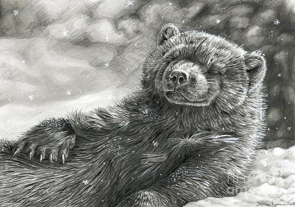Росомаха (Мат, 18,) Росомаха животное-маньяк и отморозок, буквально Тэд Банди, Ганнибал Лектер и Джек Потрошитель звериного мира в одной морде. Почти то же самое, что медоед, только северная.