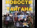 Новости Тайгана: Зубков в Москве. Нет федеральному статусу. Лола. Тушина