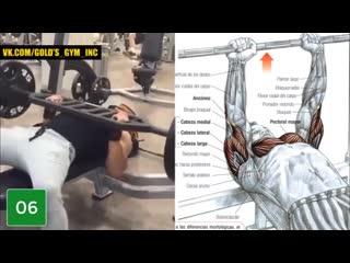 Работаем над грудными мышцами
