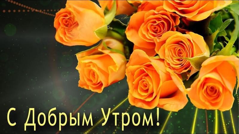 ✅С Добрым Утром! С Новым Днем!✅Анимационная открытка 4К