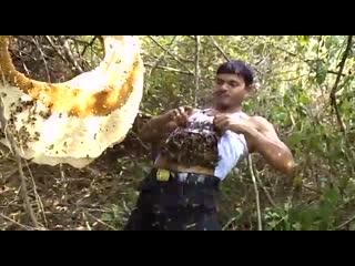 Этот парень не боится пчёл. Группа Опасная Планета..