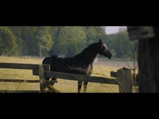 Восточный ветер 4: Легенда о Воине  Русский трейлер (2020)