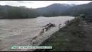 В Республике Алтай и Чарышском районе река вышла из берегов (22.05.19г., Бийское телевидение)