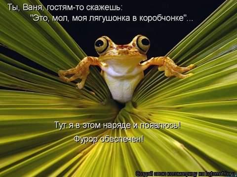 Учитель русского языка сокрушалась по поводу того, что нынче дети в шестом классе не знают множества слов Веретено, например. Или глаголить. Или вдругорядь. Нет, веретено я еще понимаю. Хотя