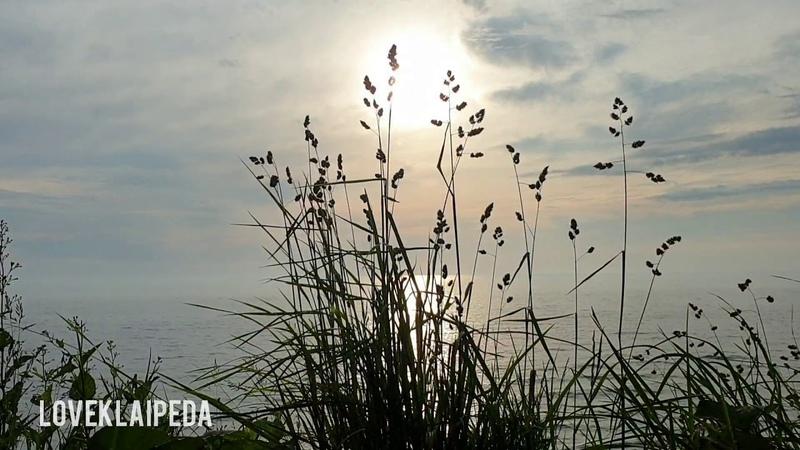 Joninių saulėlydis loveklaipeda