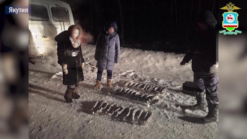 Якутянин незаконно выловил осетров на 5 млн рублей