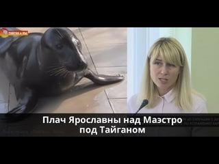 Плач Ярославны над Маэстро под Тайганом (трагедия)