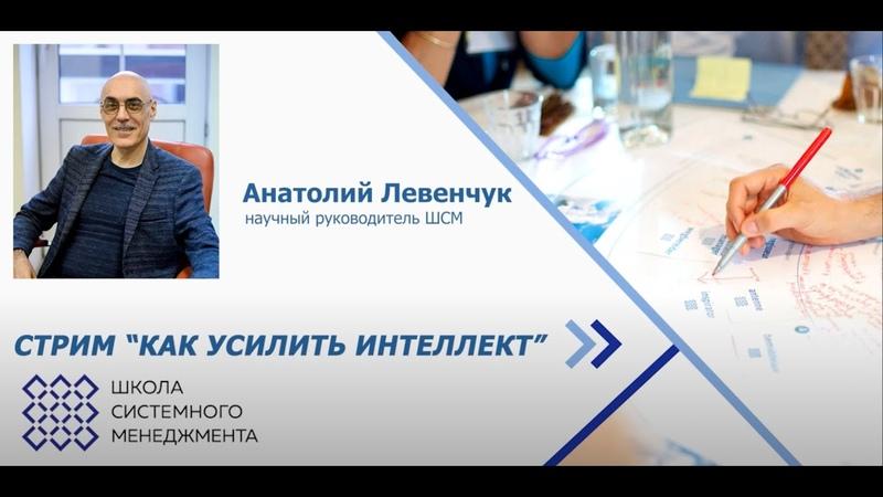 Стрим Как усилить интеллект Анатолий Левенчук