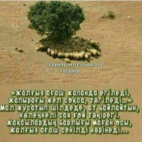 Фотография профиля Айбека Сейілхана ВКонтакте