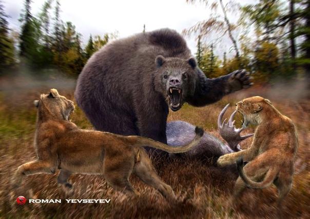 giant animals north america - HD1869×1307
