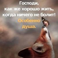 Фото профиля Веры Васильковой