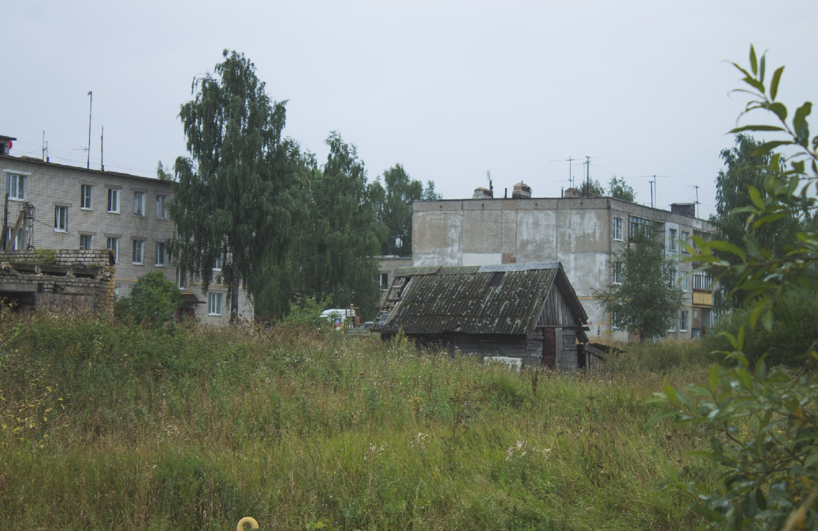 Ярославская область, д - Фото