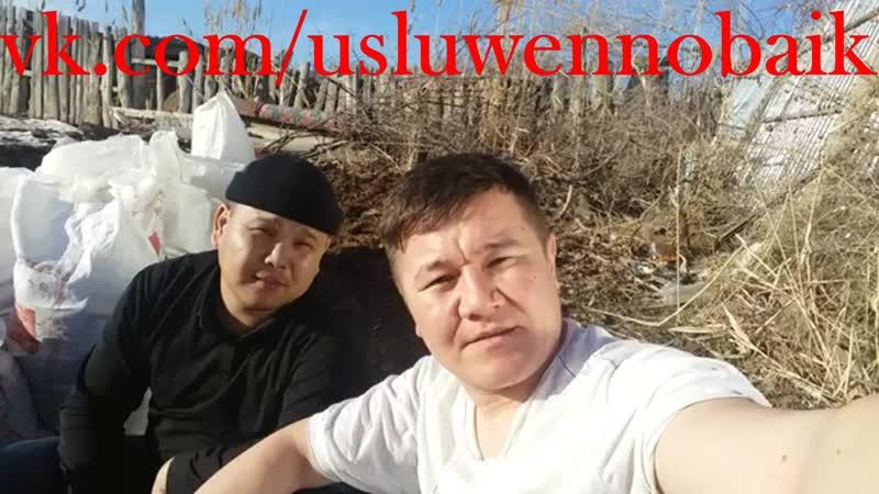 Хожу в футболке, в городе лето - в Кызылорде потеплело в разгар зимы(vk.com/usluwennobaik)