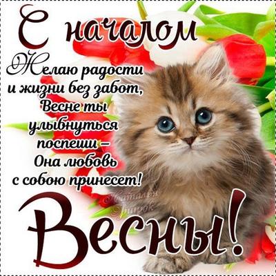 Дмитрий Седов
