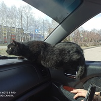 Дорога Сергей