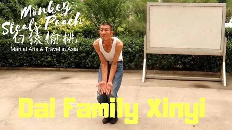 A Lesson in Dai Style Xinyi Quan - Exploring Xingyi Quan ep9d