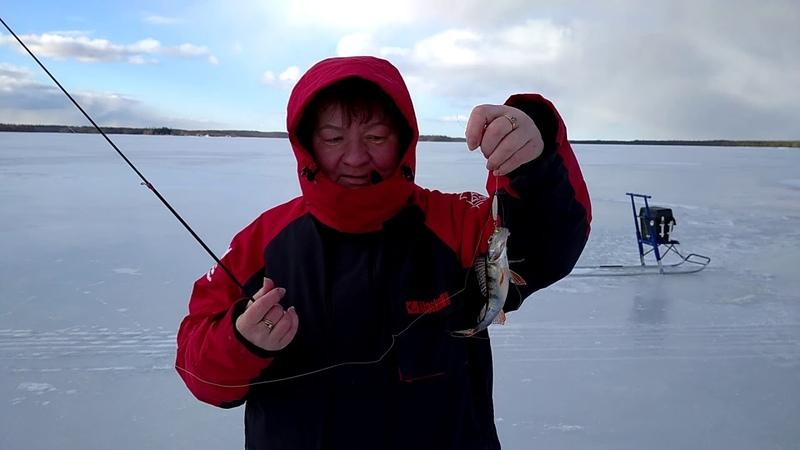 Отдых и рыбалка в Карелии Сямозеро Кудама Рыбалка с физруком